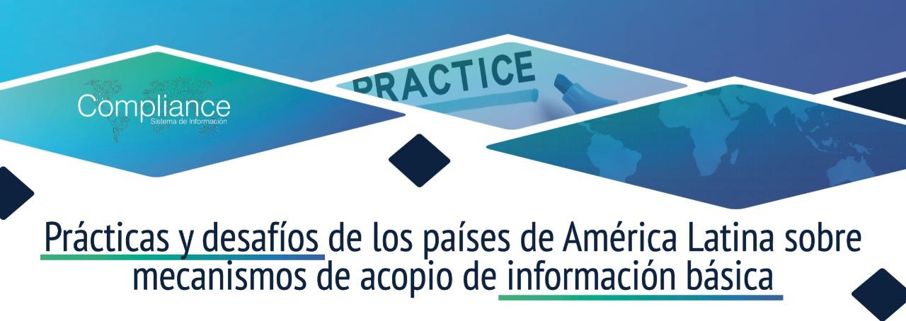 Informe de prácticas y desafíos de los países de América Latina sobre los mecanismos de acopio de información básica y de beneficiarios finales.